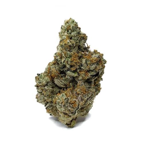 Dime Bag | Gelato Cake Flower - 3.5g
